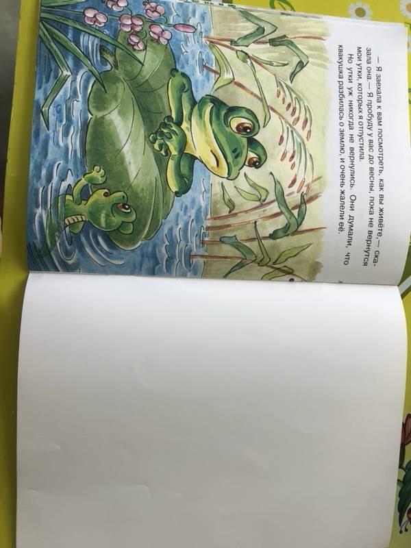 Иллюстрация 15 из 16 для Лягушка-путешественница - Всеволод Гаршин | Лабиринт - книги. Источник: Кудашкина  Татьяна