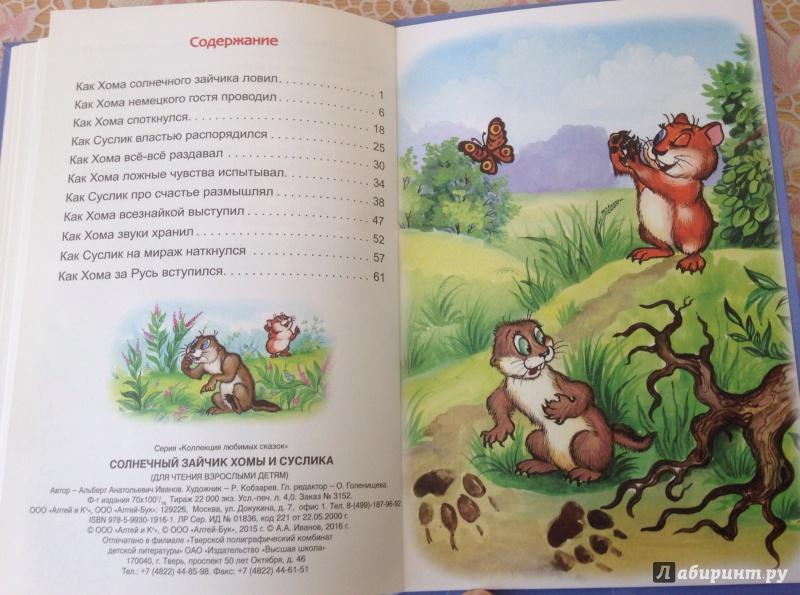 Иллюстрация 9 из 22 для Солнечный зайчик Хомы и Суслика - Альберт Иванов   Лабиринт - книги. Источник: ХК