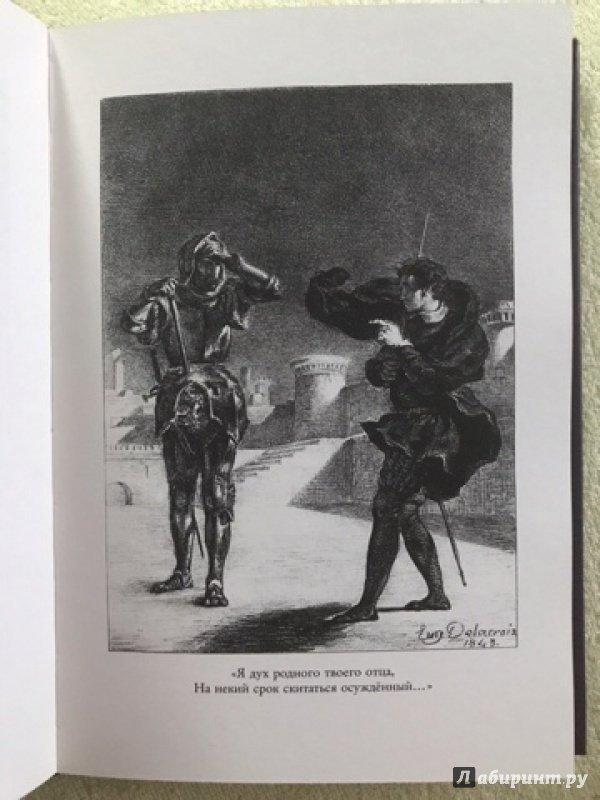 Иллюстрация 31 из 36 для Гамлет, принц датский - Уильям Шекспир   Лабиринт - книги. Источник: Скурская  Татьяна