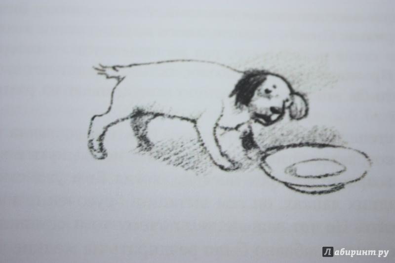 рисунки к рассказу белый бим черное ухо
