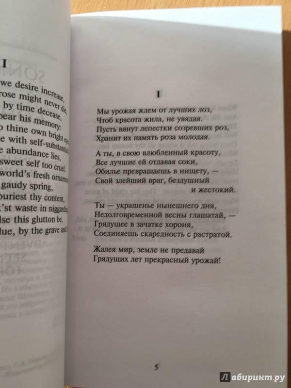 Иллюстрация 7 из 21 для Сонеты - Уильям Шекспир | Лабиринт - книги. Источник: Ефимова  Мария Владимировна