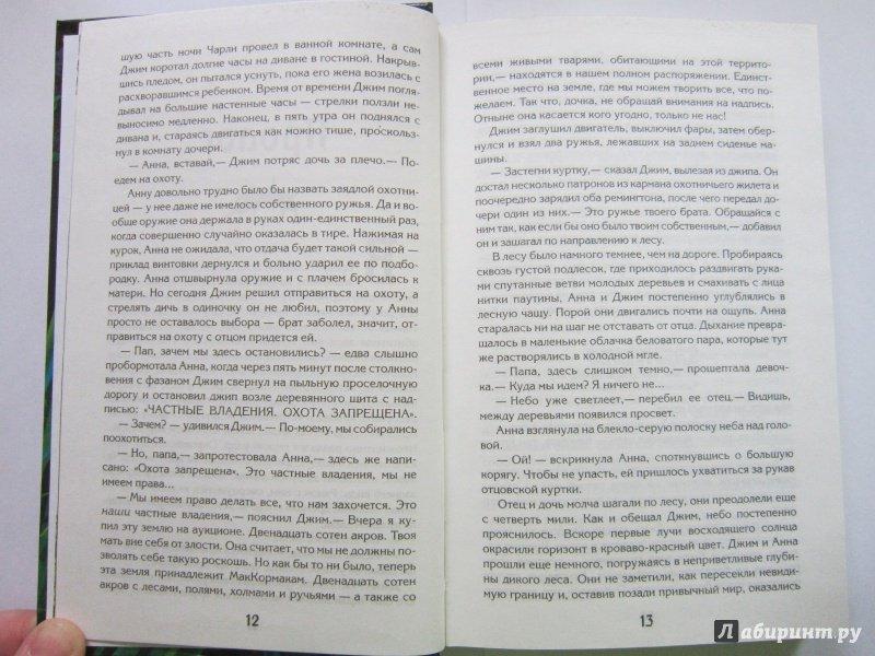 Иллюстрация 9 из 32 для Заклятие эльфов. Нижняя дорога - Даниэль Кирк | Лабиринт - книги. Источник: Ермакова Юлия