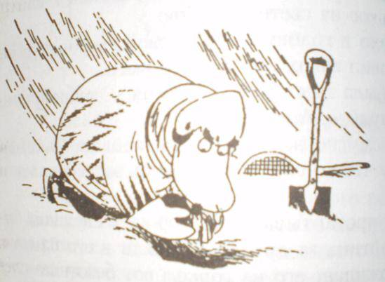 Иллюстрация 8 из 24 для Все о Муми-Троллях. Волшебная зима: Повести-сказки - Туве Янссон   Лабиринт - книги. Источник: Ирина