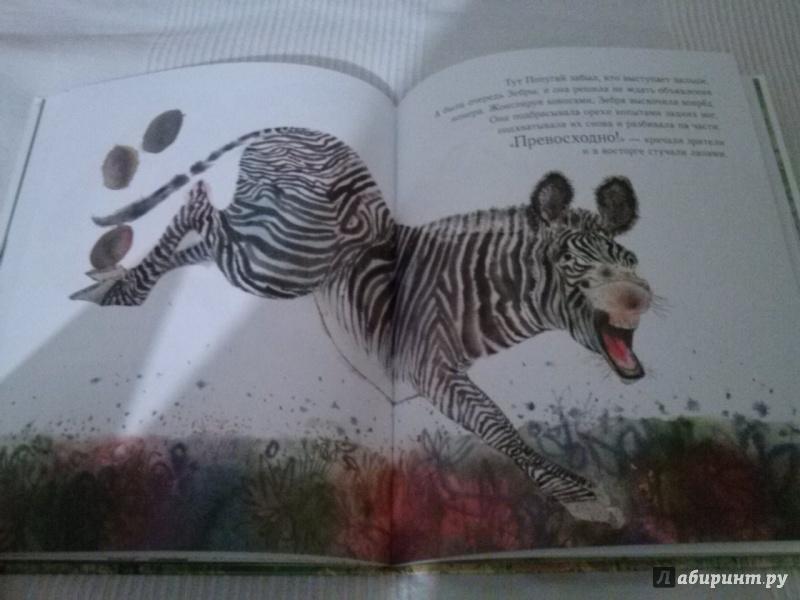 Иллюстрация 19 из 20 для Праздник в джунглях - Брайан Уайлдсмит | Лабиринт - книги. Источник: Анна