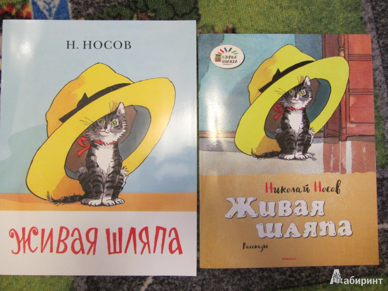 Фото книги носова живая шляпа