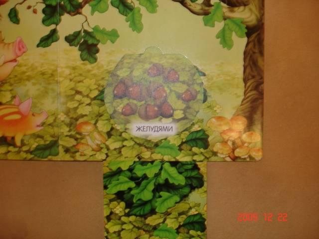 Иллюстрация 12 из 13 для Книжки-задвижки. В лесу - Гайда Лагздынь | Лабиринт - книги. Источник: Осьминожка