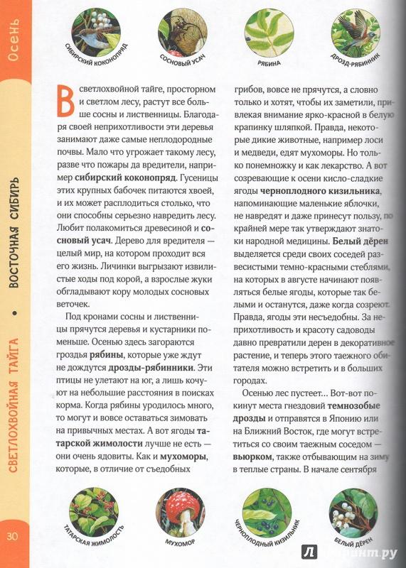 Иллюстрация 7 из 10 для Лесные путешествия. От России до Америки - Артюшенко, Смирнова | Лабиринт - книги. Источник: Амон  Валентина