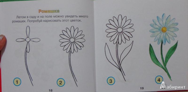 Иллюстрация 8 из 30 для Я умею рисовать - Галина Шалаева | Лабиринт - книги. Источник: Оля******