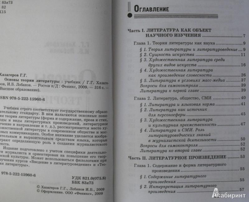 Иллюстрация 3 из 8 для Основы теории литературы - Хазагеров, Лобанов   Лабиринт - книги. Источник: olnlo