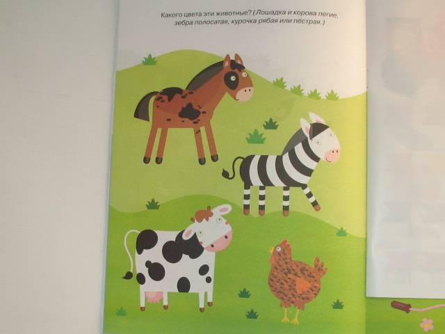 Иллюстрация 10 из 17 для Цвета и формы - Ольга Земцова | Лабиринт - книги. Источник: Юлия1978