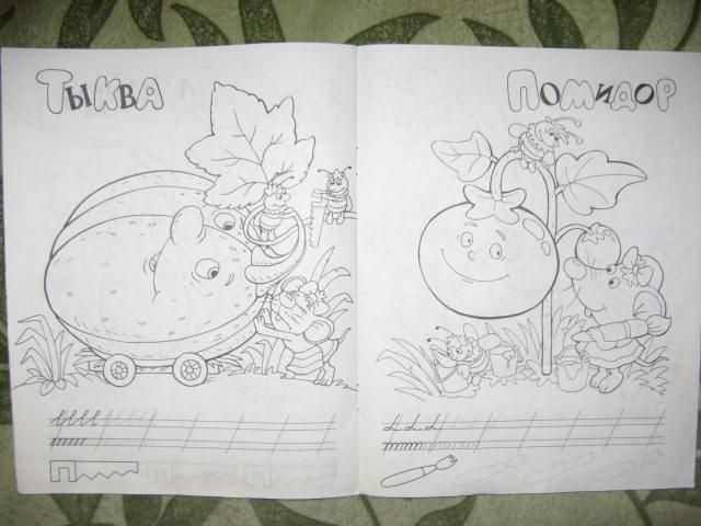 Иллюстрация 1 из 6 для Фрукты и овощи   Лабиринт - книги. Источник: libe