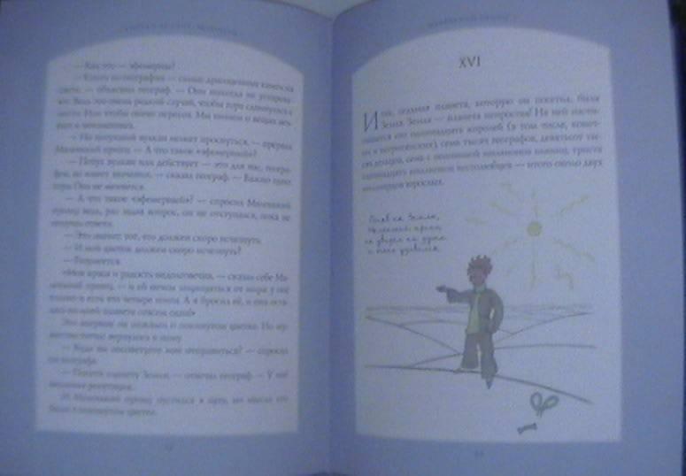 Иллюстрация 9 из 100 для Маленький принц - Антуан Сент-Экзюпери | Лабиринт - книги. Источник: Никитина  Анастасия Александровна