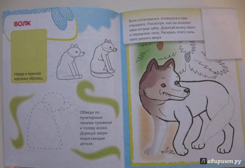 Иллюстрация 18 из 25 для Лесные звери. Дорисуй и раскрась   Лабиринт - книги. Источник: Лабиринт