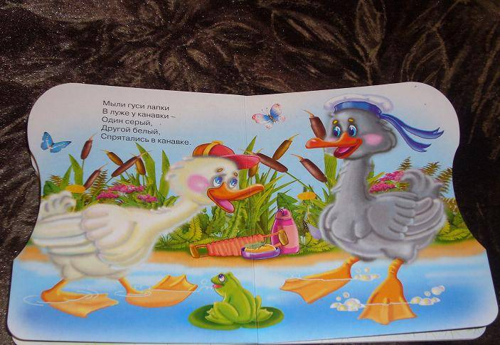 Иллюстрация 3 из 5 для Два веселых гуся | Лабиринт - книги. Источник: Вакилова Елена Юрьевна