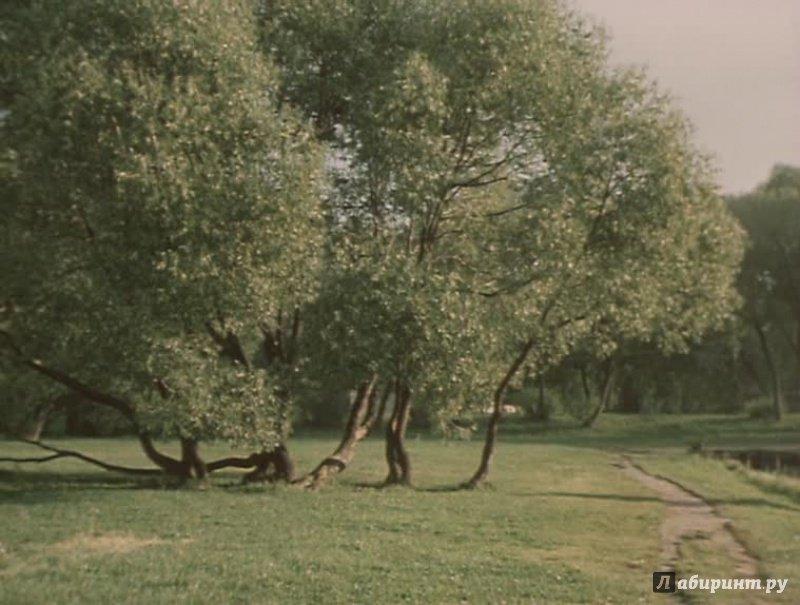Иллюстрация 1 из 10 для Летучая мышь (DVD) - Ян Фрид | Лабиринт - . Источник: noname