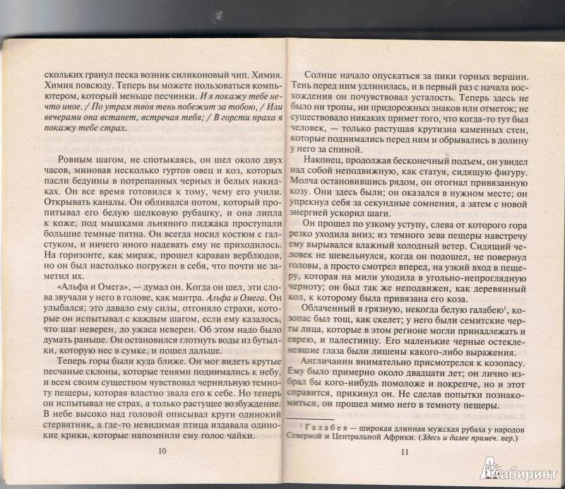 Иллюстрация 6 из 12 для Алхимик. Книга 1 - Питер Джеймс | Лабиринт - книги. Источник: Цветкова  Марина
