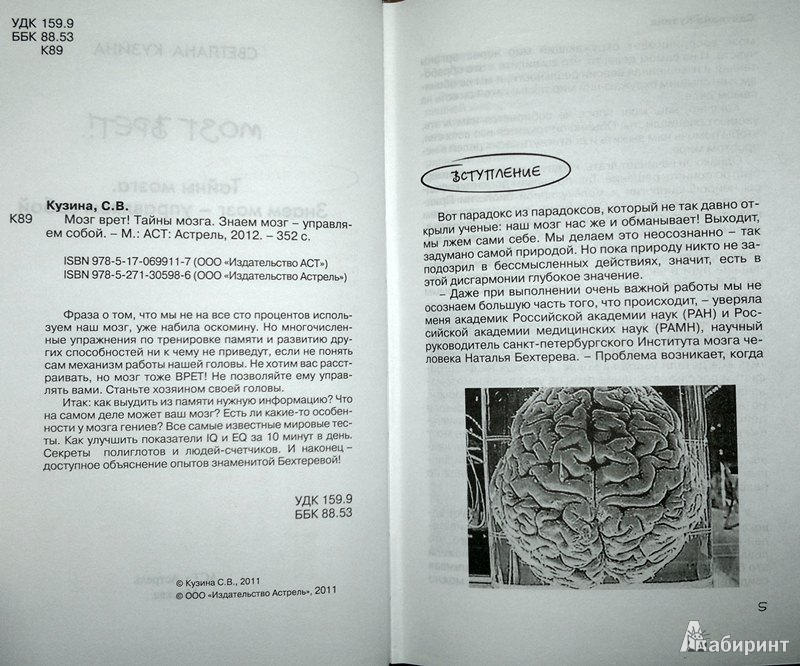 Иллюстрация 3 из 10 для Мозг врет! Тайны мозга. Знаем мозг - управляем собой - Светлана Кузина   Лабиринт - книги. Источник: Леонид Сергеев