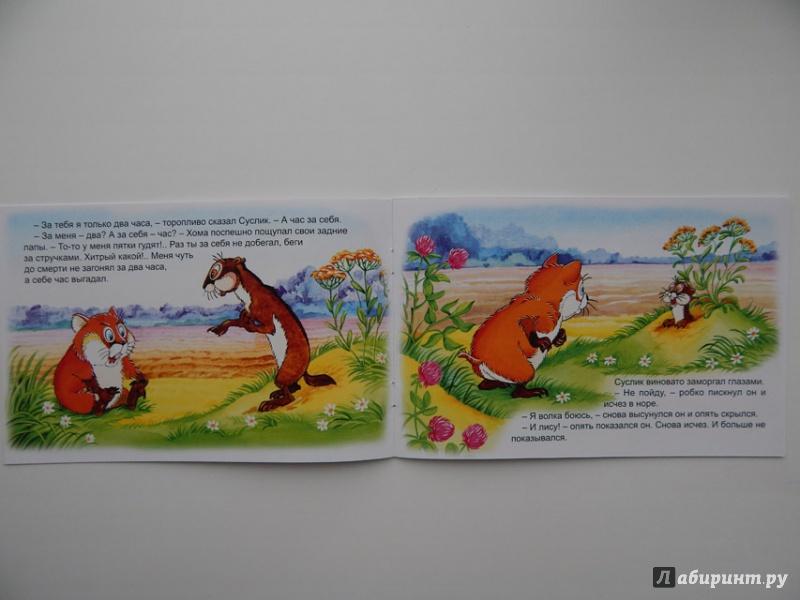 Иллюстрация 39 из 47 для Как Хома на дальнее поле за рощу ходил - Альберт Иванов | Лабиринт - книги. Источник: Мелкова  Оксана