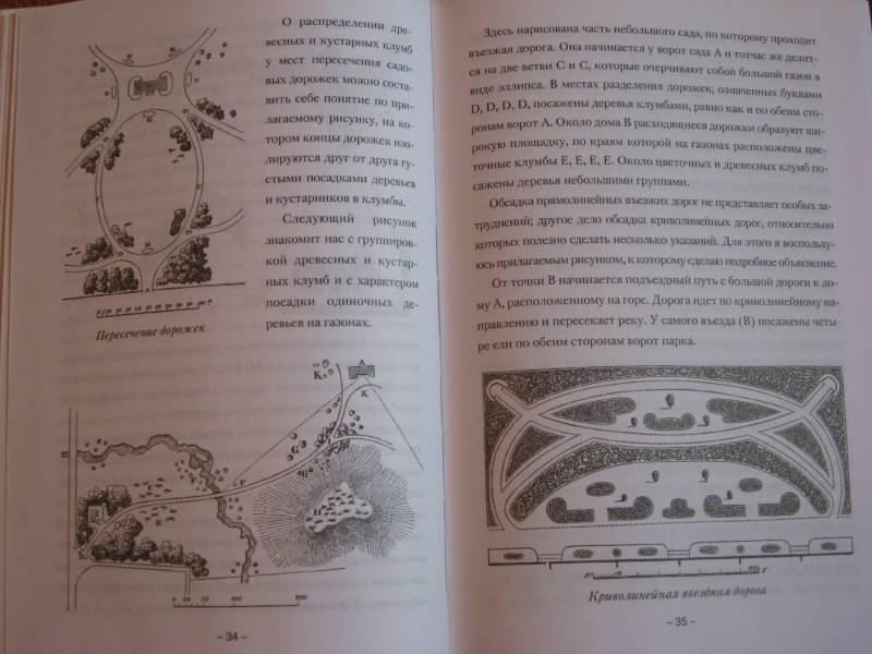 Иллюстрация 1 из 3 для Ландшафтный сад - Константин Епанчин   Лабиринт - книги. Источник: Фомина  Анна Сергеевна