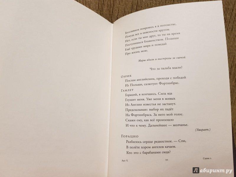 Иллюстрация 13 из 36 для Гамлет, принц датский - Уильям Шекспир   Лабиринт - книги. Источник: Алексей Гапеев