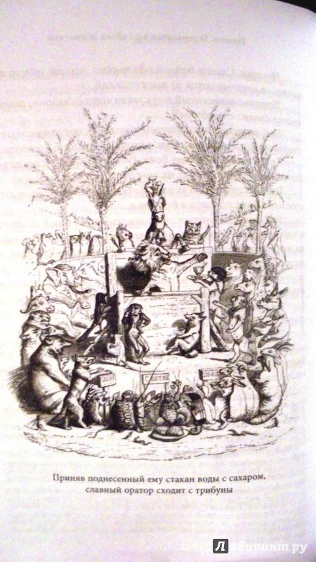 Иллюстрация 4 из 21 для Сцены частной и общественной жизни животных - Санд, Бальзак, Сталь | Лабиринт - книги. Источник: Александр Н.