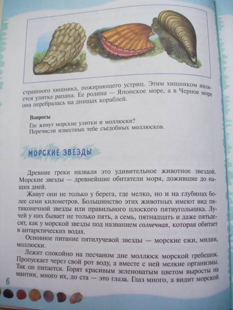 Иллюстрация 30 из 39 для Тайны морского дна: книга для чтения детям - Геннадий Целищев | Лабиринт - книги. Источник: Осьминожка