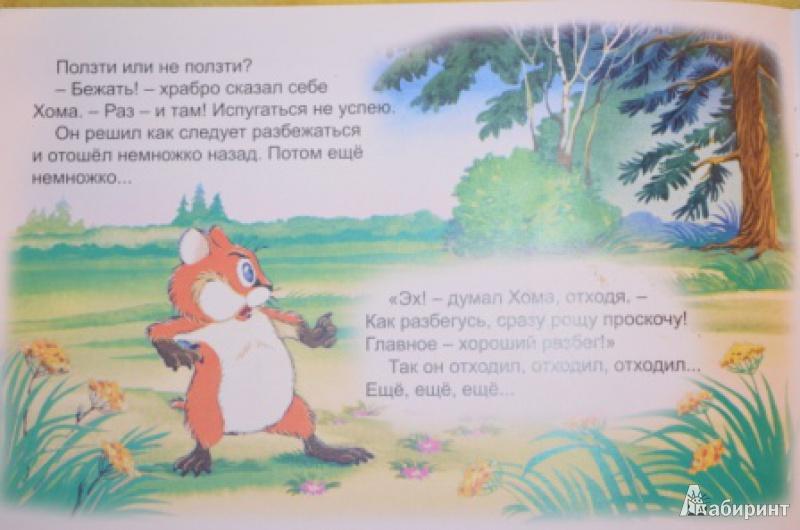 Иллюстрация 14 из 47 для Как Хома на дальнее поле за рощу ходил - Альберт Иванов | Лабиринт - книги. Источник: Moonlight2