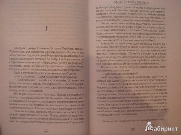 Иллюстрация 4 из 5 для Дело Тутанхамона - Кристиан Жак   Лабиринт - книги. Источник: Гунякова  Анна