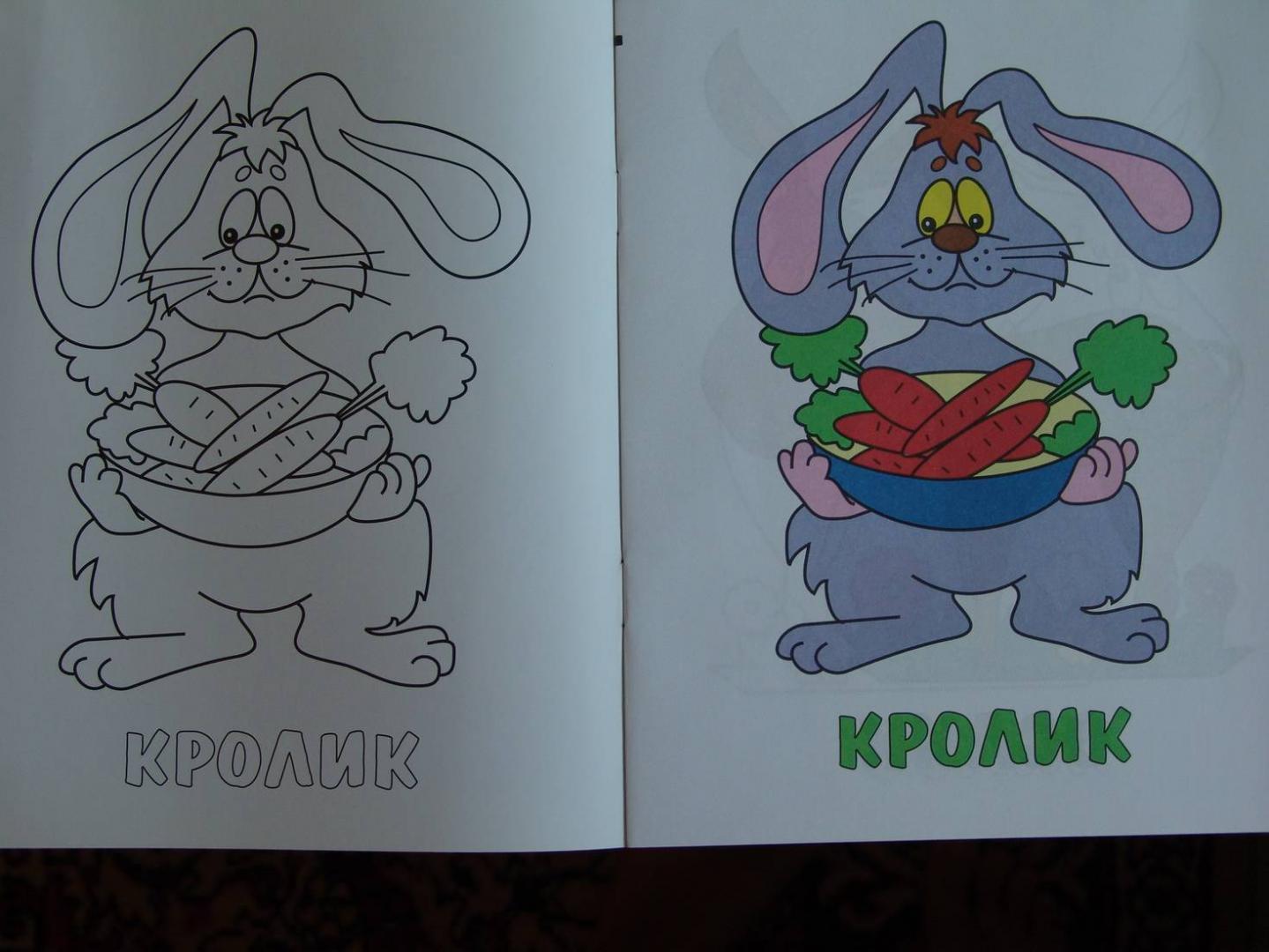 Иллюстрация 1 из 3 для Теленок и его друзья (раскраска ...