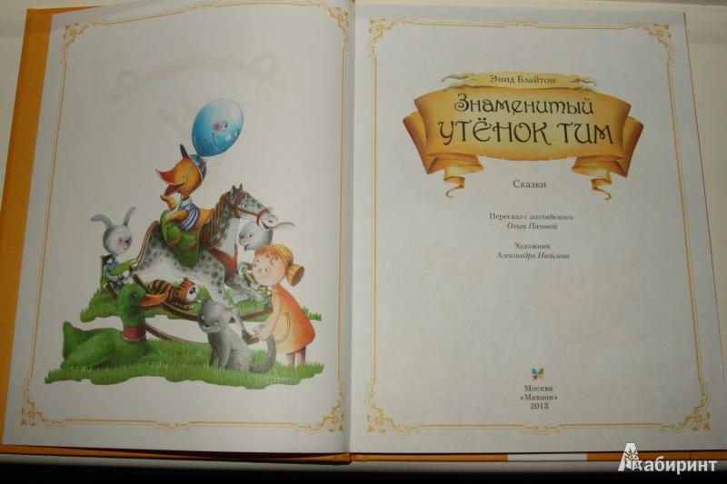 Иллюстрация 7 из 21 для Знаменитый утёнок Тим - Энид Блайтон | Лабиринт - книги. Источник: Павлинова  Ирина Евгеньевна