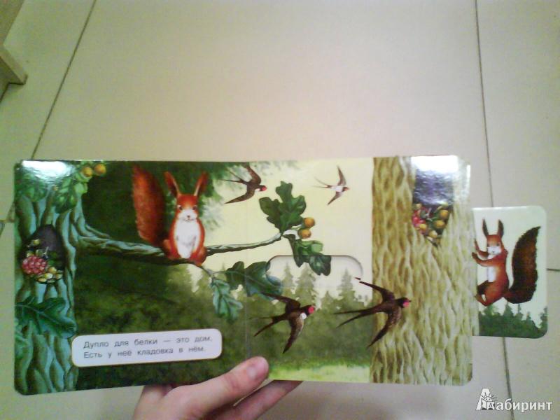 Иллюстрация 7 из 10 для Где мой домик? - Юлия Шигарова | Лабиринт - книги. Источник: Мила