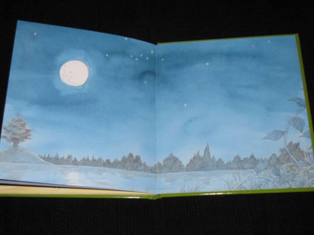 Иллюстрация 44 из 44 для Подарки в День рождения - Пол Стюарт   Лабиринт - книги. Источник: Nemertona