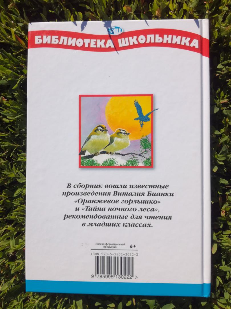 Иллюстрация 16 из 25 для Тайна ночного леса - Виталий Бианки | Лабиринт - книги. Источник: Каппес  Ангелина