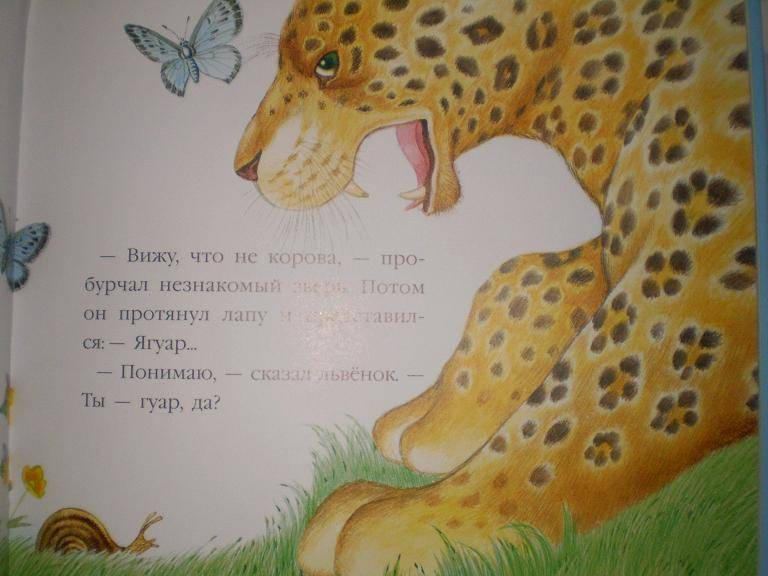 Иллюстрация 26 из 52 для В подарок малышу: Непонятливый львенок - Михаил Пляцковский | Лабиринт - книги. Источник: Ирина