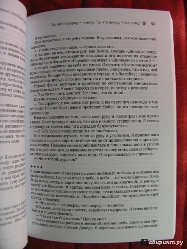 Иллюстрация 6 из 12 для Эмир Кустурица. Где мое место в этой истории? Автобиография - Кустурица   Лабиринт - книги. Источник: manuna007