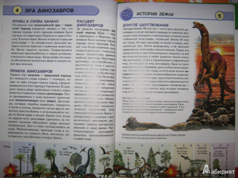 Иллюстрация 5 из 33 для Динозавры. Ящеры мезозойской эры - Юлия Школьник   Лабиринт - книги. Источник: Евгения39