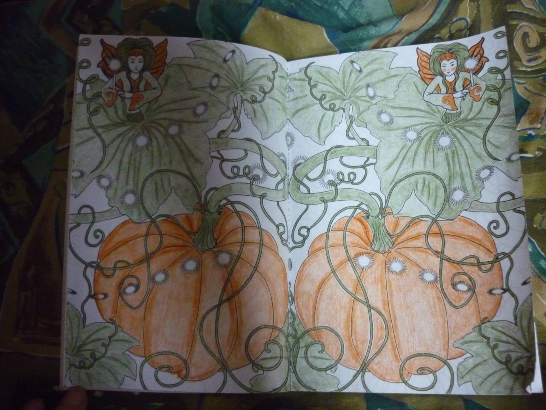 Иллюстрация 57 из 72 для Лесные феи. Мини-раскраска ...