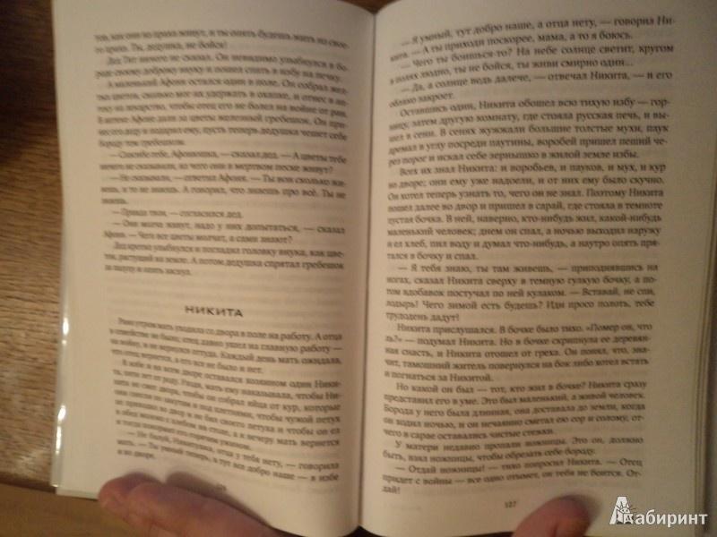 Иллюстрация 9 из 25 для Сухой хлеб: Рассказы, сказки - Андрей Платонов | Лабиринт - книги. Источник: Karfagen