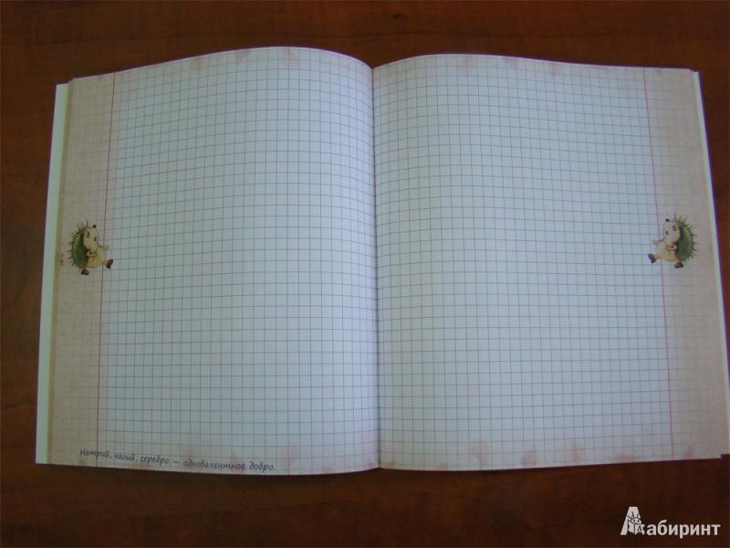 Иллюстрация 8 из 13 для Надежно и без зубрежки. Ежедневная тетрадь. 48 листов. Клетка | Лабиринт - канцтовы. Источник: mif