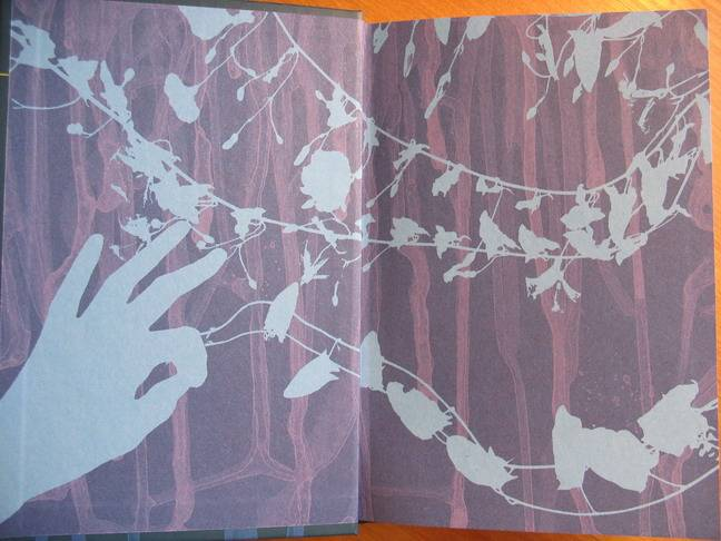 Иллюстрация 3 из 11 для Ирония жизни в разных историях - Али Смит | Лабиринт - книги. Источник: Брагина  Дарья Валерьевна