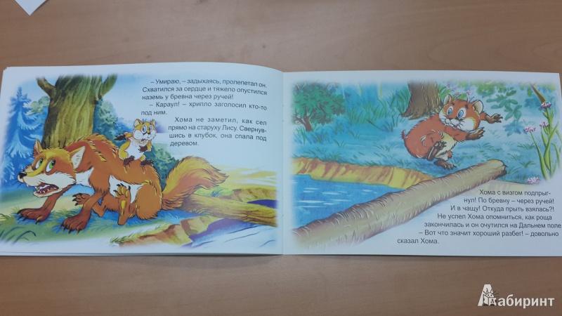 Иллюстрация 26 из 47 для Как Хома на дальнее поле за рощу ходил - Альберт Иванов | Лабиринт - книги. Источник: ИринаИ