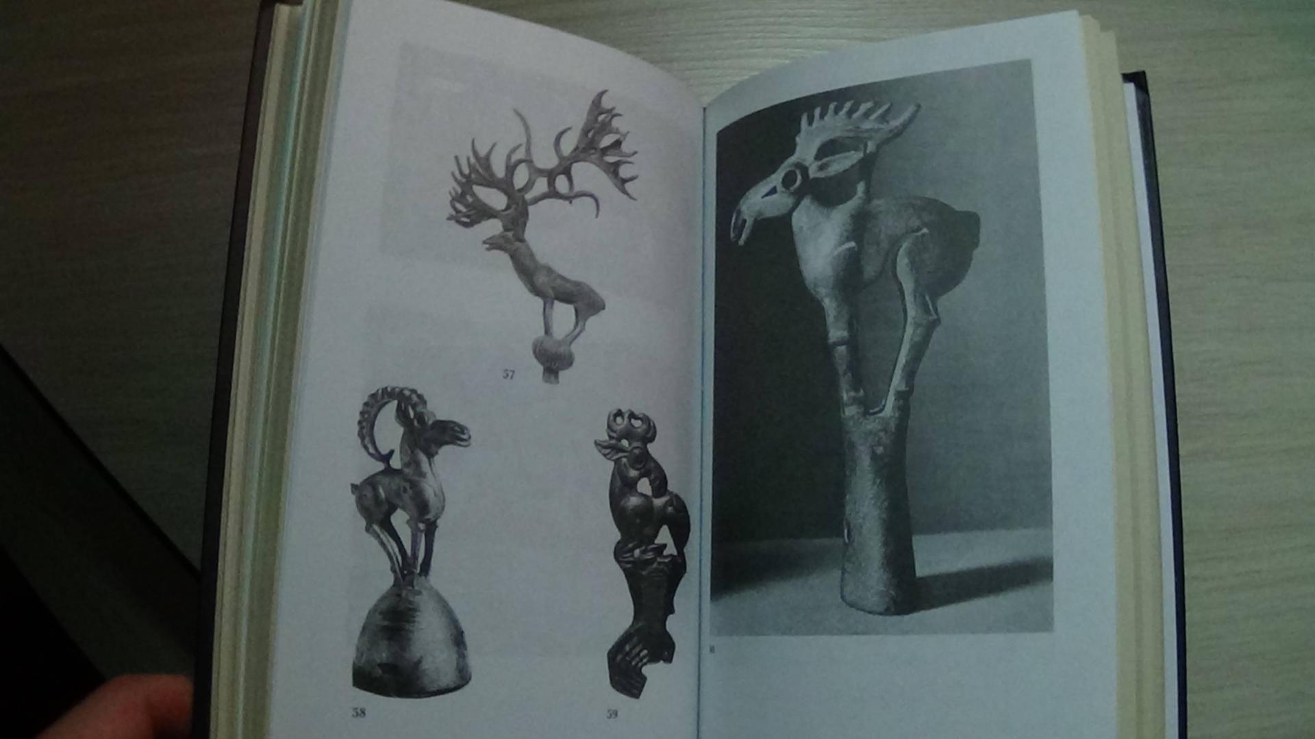 Иллюстрация 12 из 12 для Скифы. Строители степных пирамид - Тамара Райс   Лабиринт - книги. Источник: Консультант по наукам