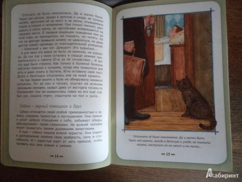Иллюстрация 7 из 8 для Быть нужным человеку - Белевцева, Жданова | Лабиринт - книги. Источник: Karfagen