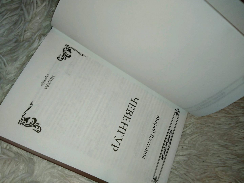 Иллюстрация 34 из 34 для Чевенгур - Андрей Платонов | Лабиринт - книги. Источник: Ксения