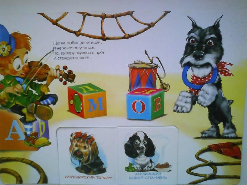 Иллюстрация 1 из 2 для Школа для собачек - Наталья Майер   Лабиринт - книги. Источник: Li_lo