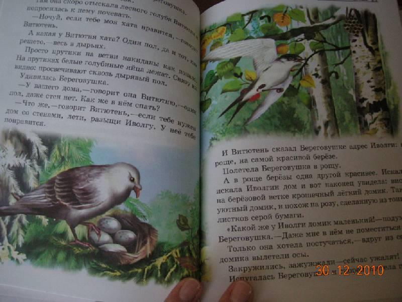 Иллюстрация 3 из 19 для Лесные домишки - Виталий Бианки | Лабиринт - книги. Источник: Honeyed