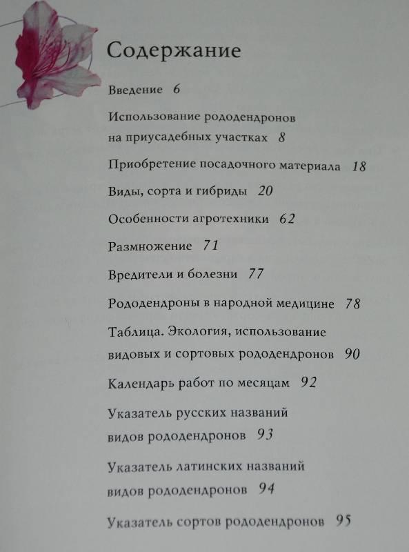Иллюстрация 1 из 9 для Рододендроны - Майя Александрова | Лабиринт - книги. Источник: МаRUSя