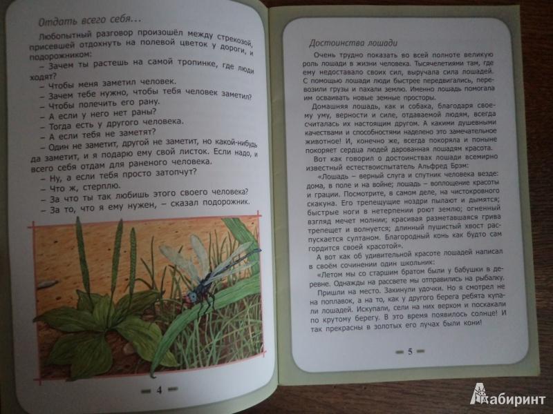 Иллюстрация 5 из 8 для Быть нужным человеку - Белевцева, Жданова | Лабиринт - книги. Источник: Karfagen