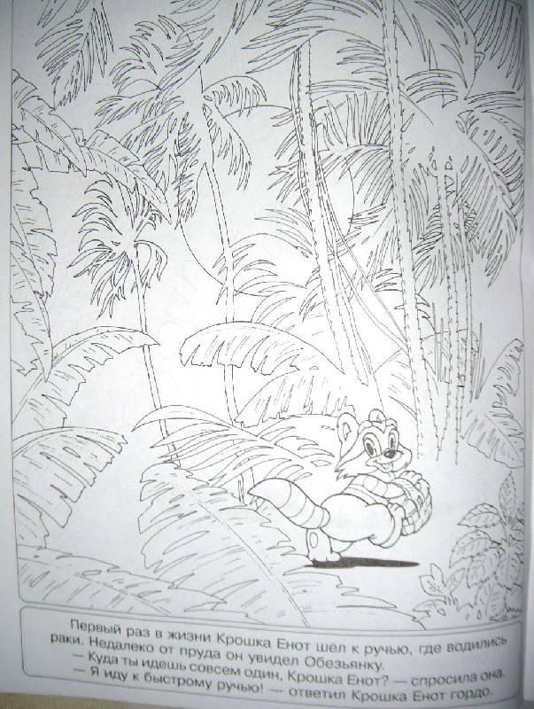 """Иллюстрация 8 из 30 для Книжка-раскраска """"Крошка Енот ..."""