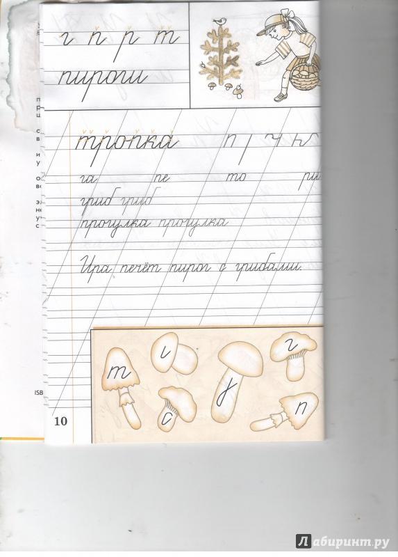 Иллюстрация 4 из 8 для Русский язык. Чистописание. 1 класс ...